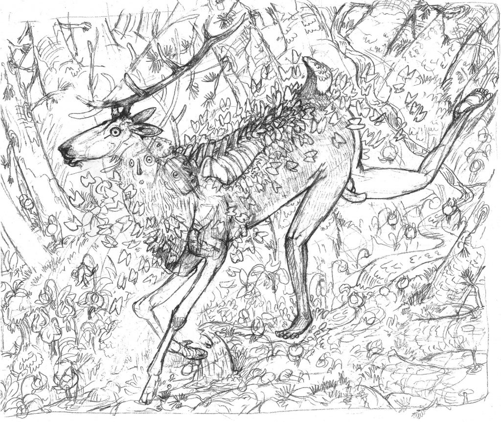 elk and butterflies sketch eric carlson